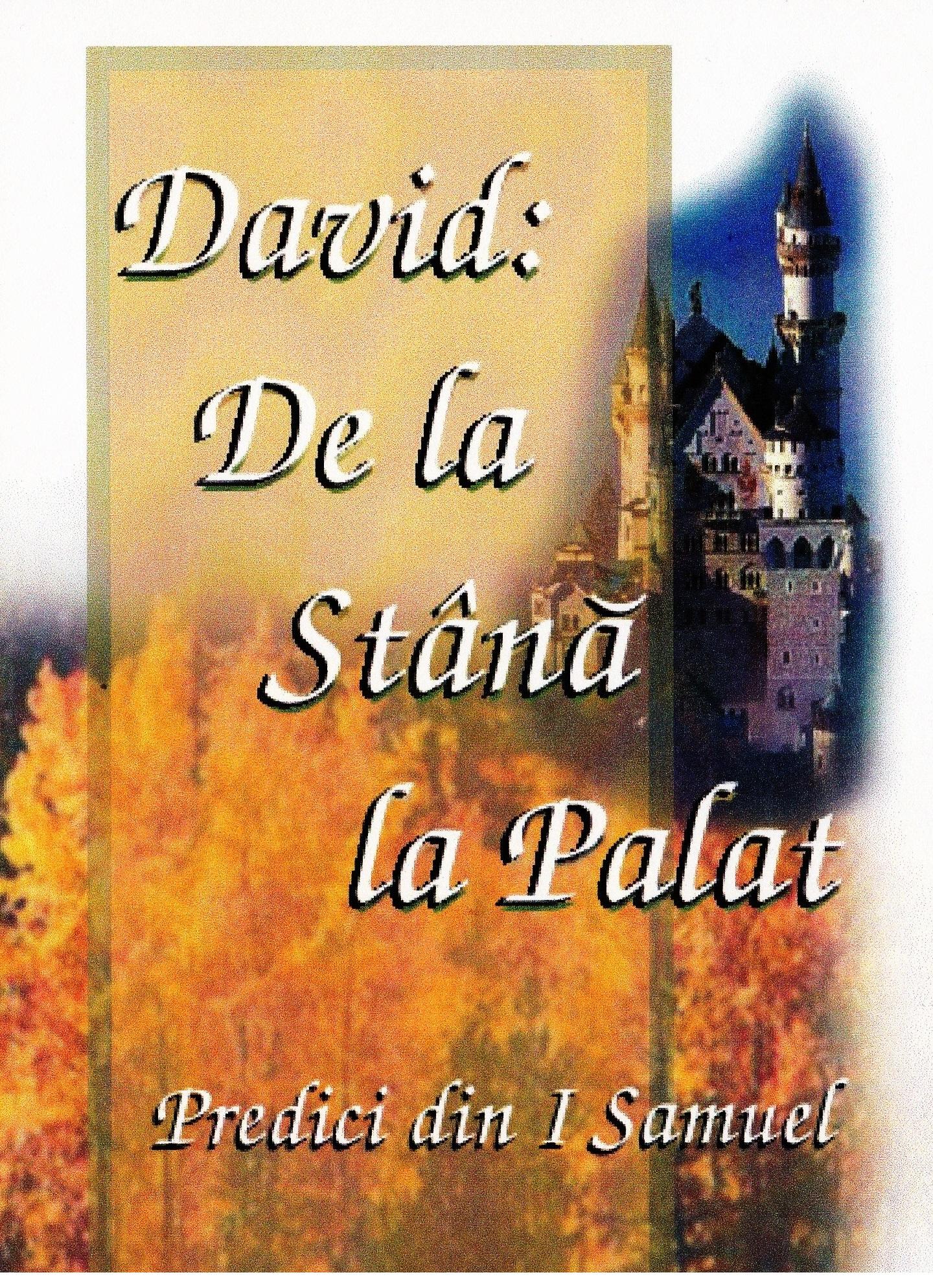 David_De la Stana la Palat cover art